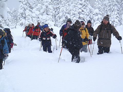 冬にはふわふわの深い新雪の森を歩く講座も