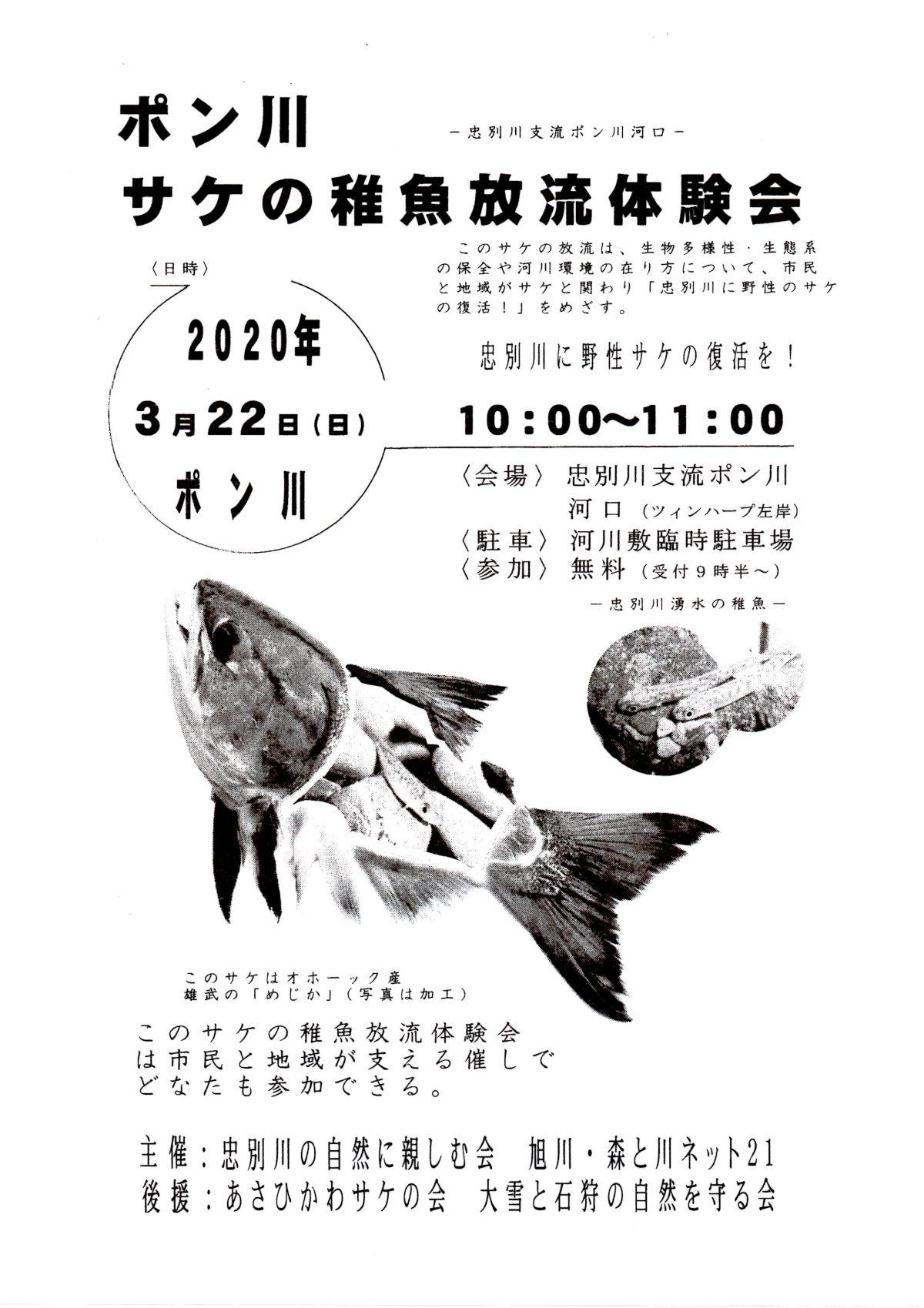 2020年3月22日 ポン川 サケの稚魚放流体験会