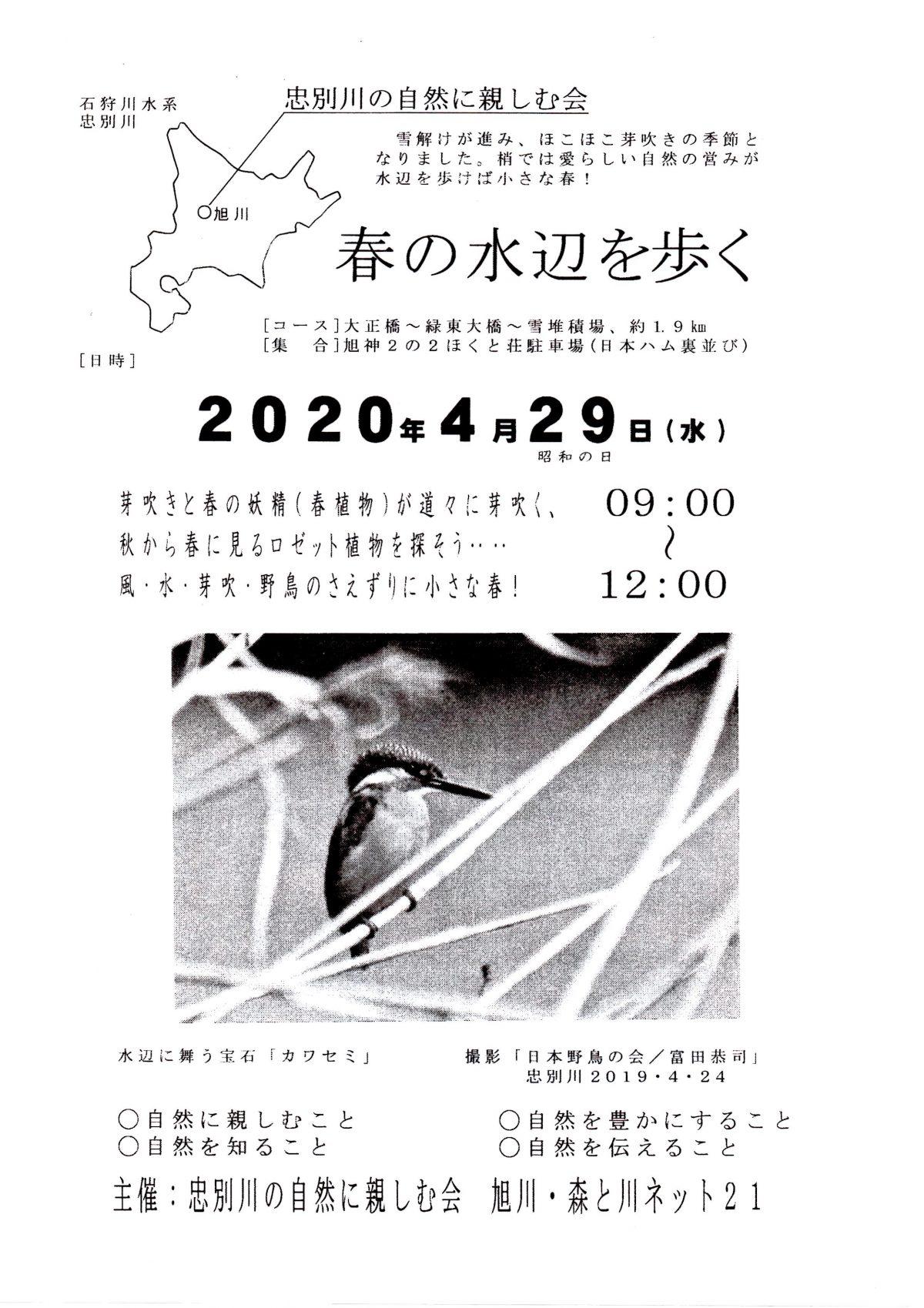 2020年4月29日 春の水辺を歩く 主催:忠別川の自然に親しむ会 旭川・森と川ネット21