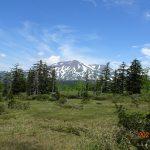 大雪山に広がる溶岩台地のこの高層湿原は旭岳がどーん!